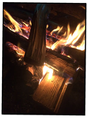 Fire Fuel